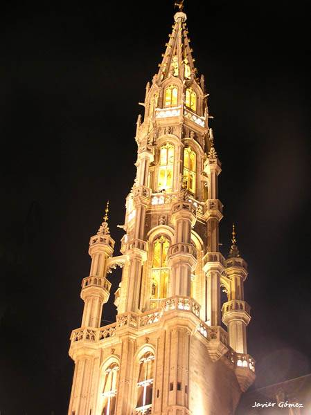 Town Hall of Brussels by night